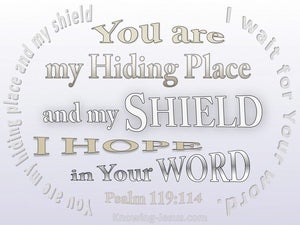 Psalm 119:114 Your Are My Hiding Place (white)