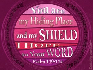Psalm 119:114 Your Are My Hiding Place (pink)