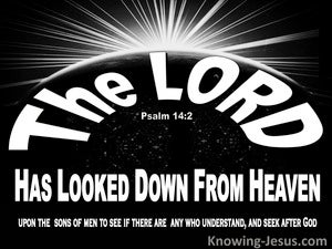 Psalm 14:2 The Lord Looked Down From Heaven (black)