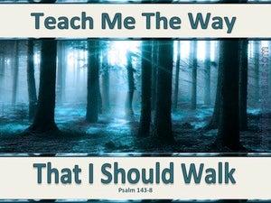 Psalm 143:8 Teach Me The Way That I Should Go (aqua)