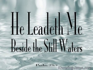 Psalm 23:2 He Leadeth Me Beside Still Waters (sage)