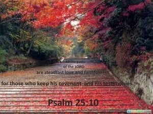 Psalm 25:10 Stedfast Love and Faithfulness (red)