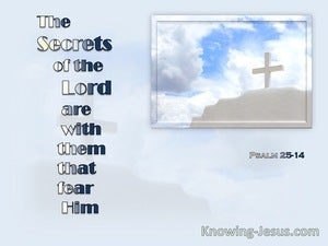 Psalm 25:14 The Secrets Of The Lord Are With Them That Fear Him (blue)
