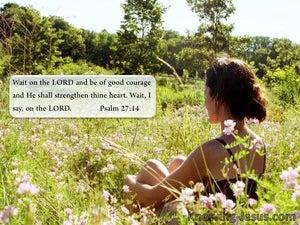 Wait Patiently Wait (devotional) (green) - Psalm 27:14