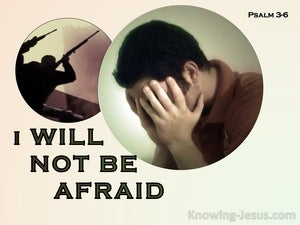 Psalm 3:6 I Will Not Be Afraid  (sage)