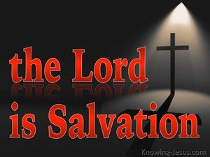 Psalm 3:8 The Lord Is Salvation (red)