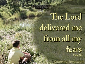 Psalm 34:4 He Delivered Me From My Fears (yellow)