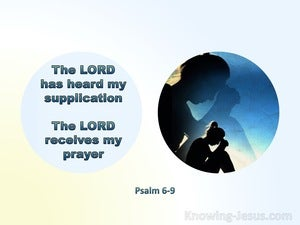 Psalm 6:9 The Lord Has Heard My Supplication And Received My Prayer (aqua)