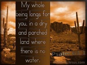 Psalm 63:1 Earnestly I Seek You (brown)