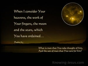 Psalm 8:3 When I Consider The Heavens (yellow)