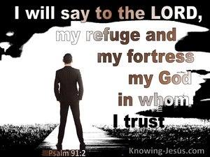 Psalm 91:2 God My Refuge And Fortress (black)