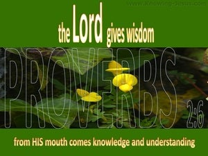 Proverbs 2:6 The Lord Gives Wisdom green