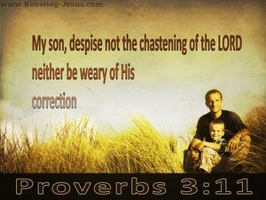 Proverbs 3:11 Do Not Despise The Lord's Correction brown