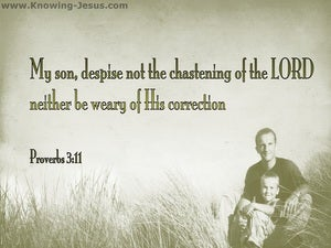 Proverbs 3:11 Do Not Despise The Lord's Correction sage