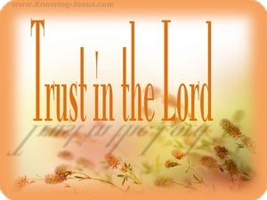 Proverbs 3:5 Trust In The Lord orange