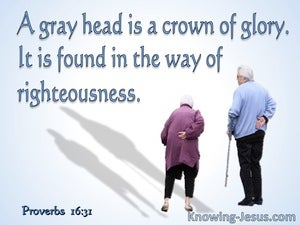 Proverbs 16:31 Gray Hair Is A Crown of Glory (blue)