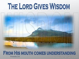 Proverbs 2:6 The Lord Gives Wisdom (blue)