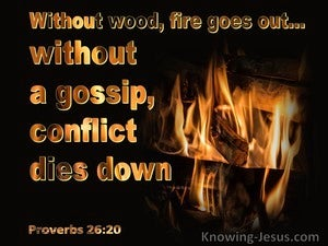 Proverbs 26:20 Without Wood, Fire Goes Out Without A Gossip, Conflict Dies Down (black)