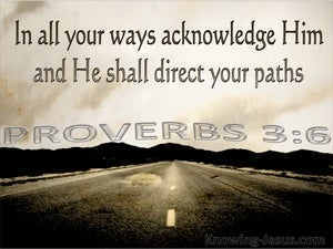Proverbs 3:6 In All Your Ways Acknowledge Him (brown)