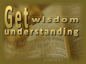 Proverbs 4:5 Get Wisdom Get Understanding (gold)