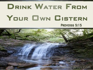 Proverbs 5:15 Drink Water From Your Own Cistern (green)