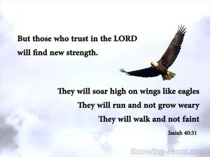 Isaiah 40:31 Those Who Trust In The Lord Will Soar brown