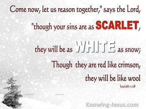 Isaiah 1:18 Sins That Are Scarlet Will Be White As Wool (white)