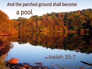 Isaiah 35:7 And The Parched Ground Shall Become A Pool (utmost)07:06