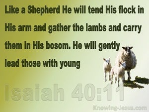 Isaiah 40:11 Like A Shepherd He Will Tend His Flock (green)