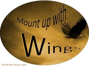Mount Up With Wings (devotional)  (brown) - Isaiah 40:31