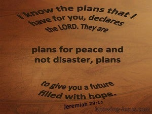 Jeremiah 29:11 The Plans I Have For You brown