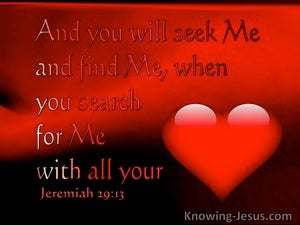 Jeremiah 29:13  You WIll Seek Me And Find Me When You Search For Me With All Your Heart (red)