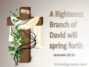 Jeremiah 33:15 A Righteous Branch of David (brown)
