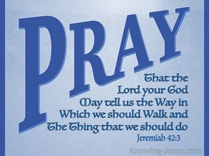 Jeremiah 42:3 Pray That The Lord May Show Us The Way (blue)