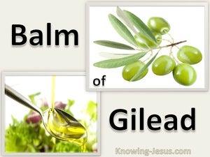 Onward Pilgrim (devotional) (beige) - Jeremiah 8:22