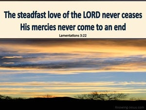 Lamentations 3:22 The Steadfast Love Of The Lord Never Fails beige