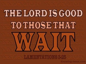 Lamentations 3:25 The Lord Is Good To Those Who Wait (brown)