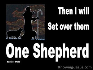 Ezekiel 34:23 He WIll Set Over Them One Shepherd (black)