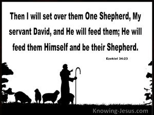 Ezekiel 34:23 He WIll Set Over Them One Shepherd (white)