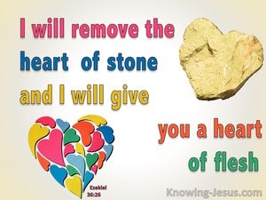 Ezekiel 36:26 A New Heart Of Flesh (pink)