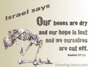 Ezekiel 37:11 Our Bones Are Dry  (brown)