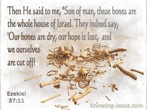 Ezekiel 37:11 Son Of Man These Bones Are The Whole House Of Israel (beige)