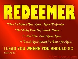 Isaiah 48:17  God Will Lead You Where You Should Go (red)