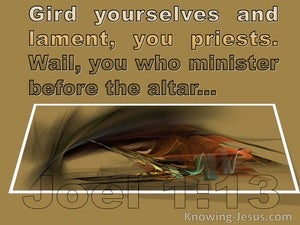 Joel 1:13 Gird yourselves with sackcloth And lament, O priests mustard