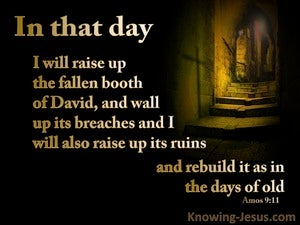 Amos 9:11 In That Day I will Raise Up David's Fallen Booth (brown)
