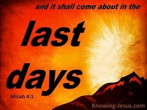 Micah 4:1 The Last Days (orange)