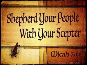Micah 7:14 Shepherd Your People (beige)