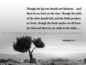 Habakkuk 3:17 Though The Fig tree Should Not Blossom gray2