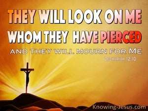 Zechariah  12-10 They WIll Look On Me Whom They Pierces orange