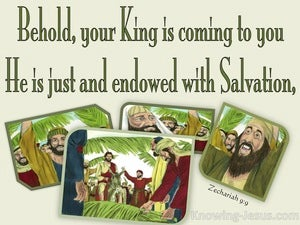 Zechariah 9:9 Behold Your King Is Coming (green)